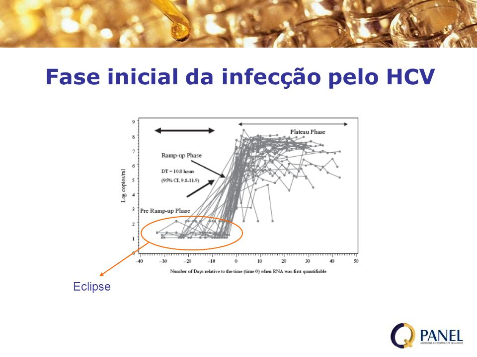 Fase inicial da infecção pelo HCV