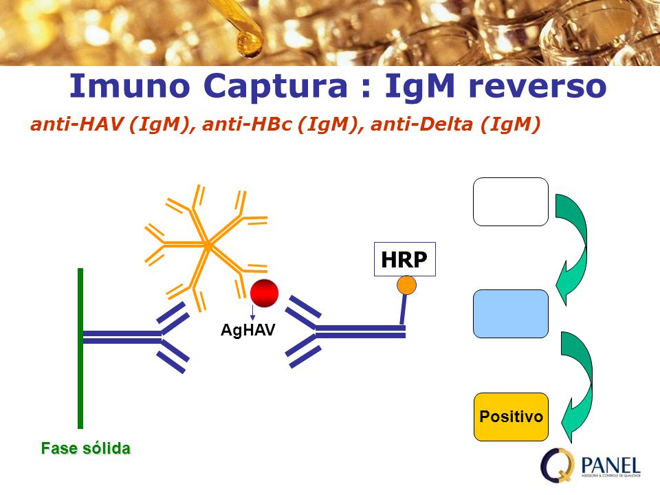 Imuno Captura : IgM reverso