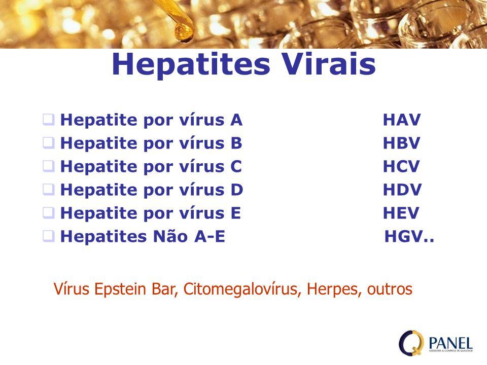 Hepatites Virais Hepatite por vírus A HAV Hepatite por vírus B HBV