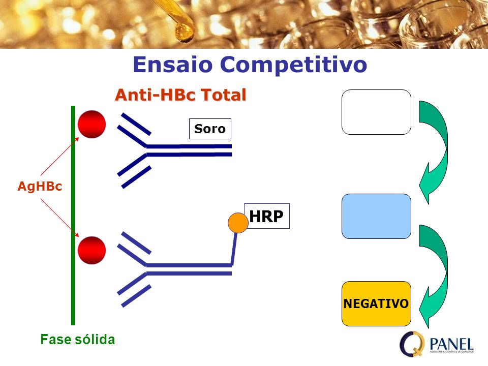 Ensaio Competitivo H2O2/TMB Anti-HBc Total HRP H2SO4 Fase sólida Soro