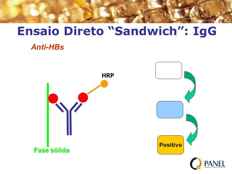 Ensaio Direto Sandwich : IgG