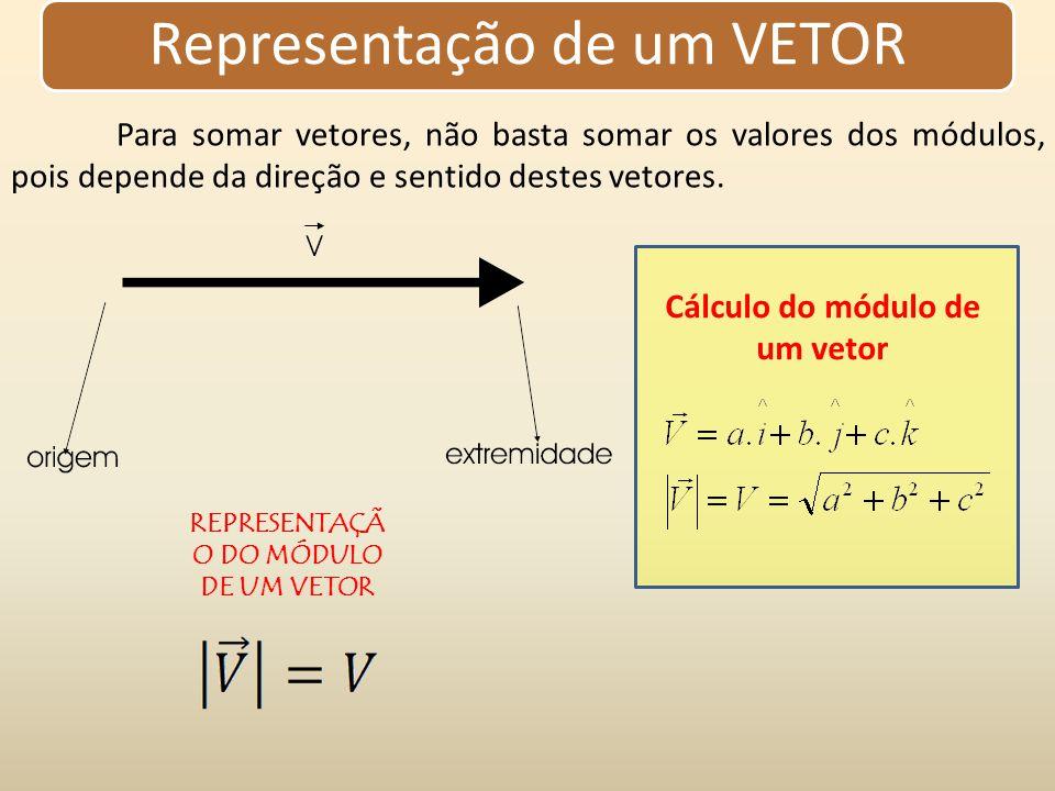 Cálculo do módulo de um vetor REPRESENTAÇÃO DO MÓDULO DE UM VETOR