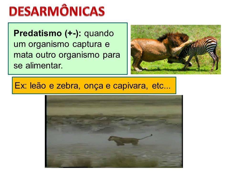 DESARMÔNICAS Predatismo (+-): quando um organismo captura e