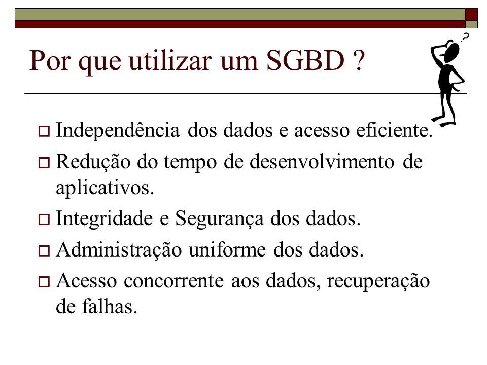 Por que utilizar um SGBD
