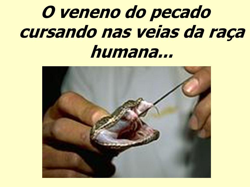O veneno do pecado cursando nas veias da raça humana...