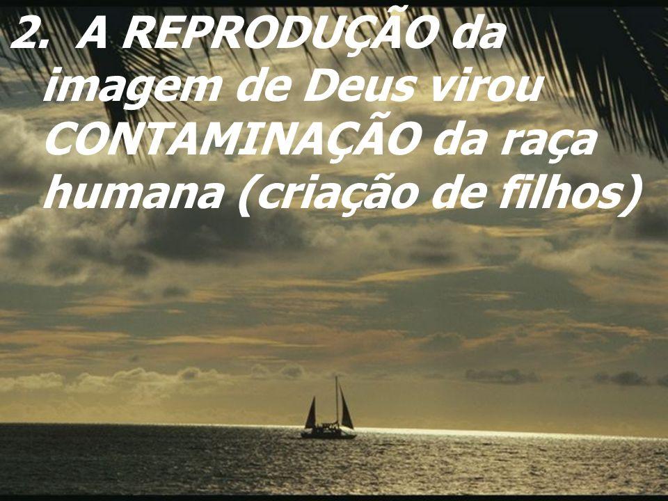 2. A REPRODUÇÃO da imagem de Deus virou CONTAMINAÇÃO da raça humana (criação de filhos)