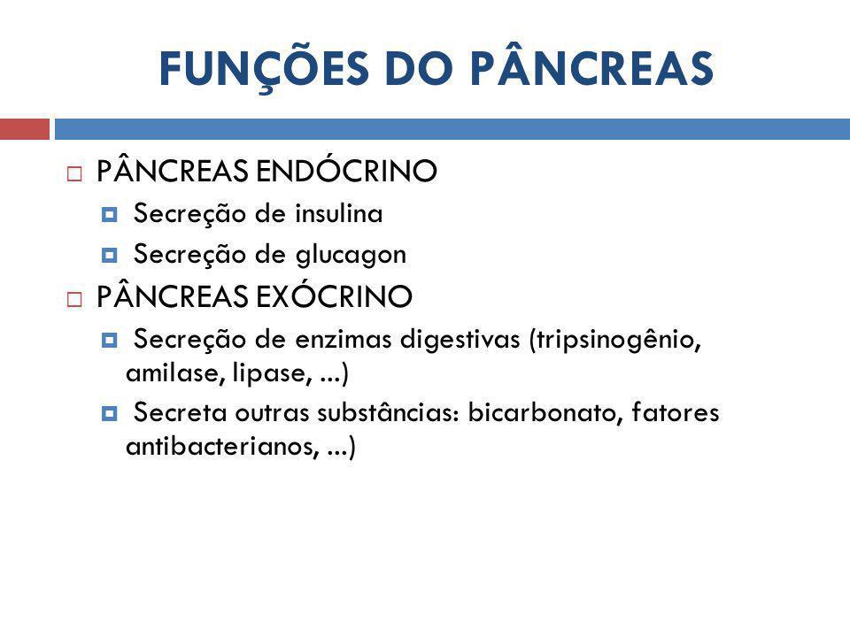 FUNÇÕES DO PÂNCREAS PÂNCREAS ENDÓCRINO PÂNCREAS EXÓCRINO