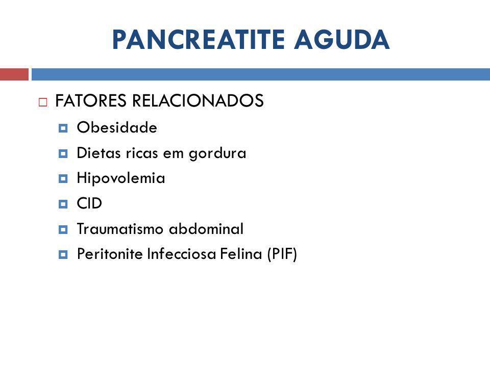 PANCREATITE AGUDA FATORES RELACIONADOS Obesidade