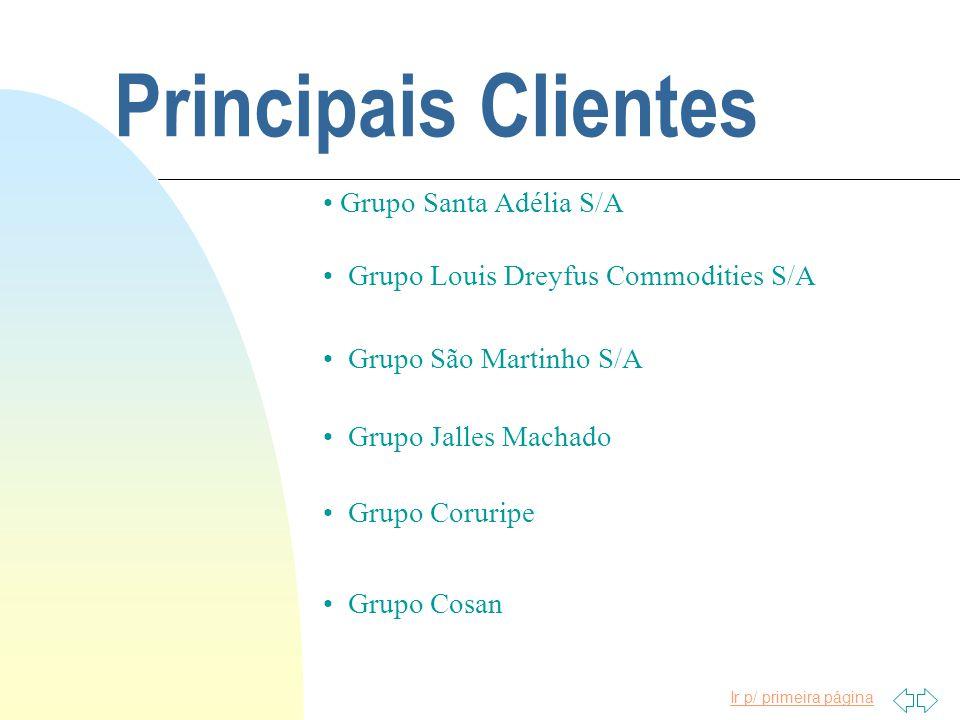 Principais Clientes Grupo Santa Adélia S/A