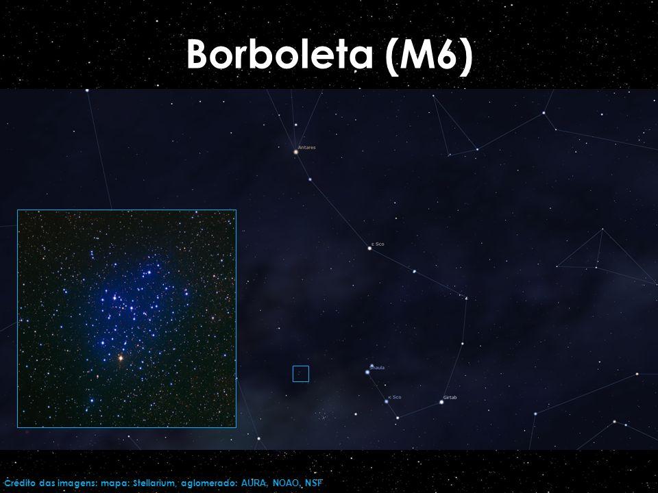 Borboleta (M6)