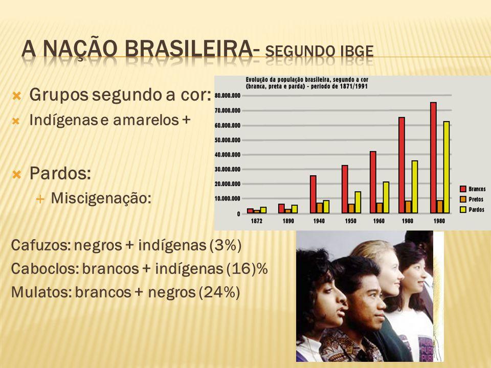 A nação brasileira- Segundo ibge