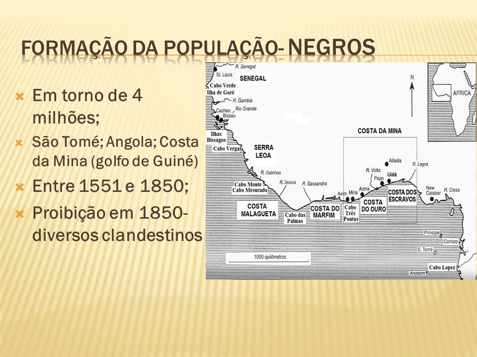Formação da população- negros