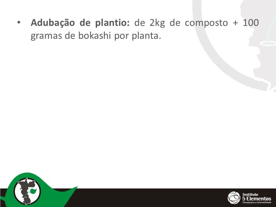 Adubação de plantio: de 2kg de composto + 100 gramas de bokashi por planta.