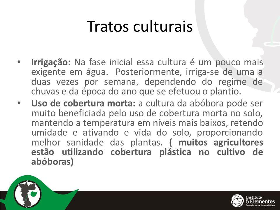 Tratos culturais