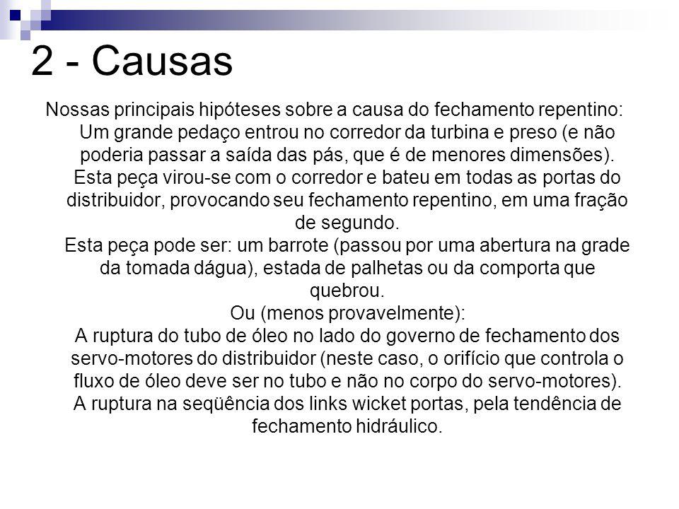 2 - Causas