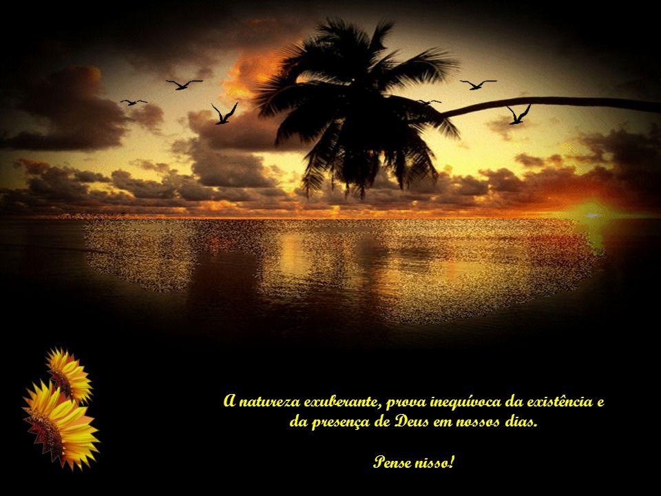 A natureza exuberante, prova inequívoca da existência e da presença de Deus em nossos dias.