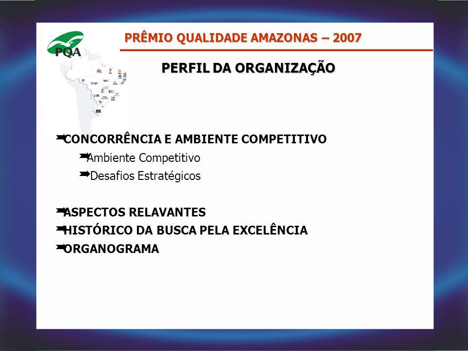 PERFIL DA ORGANIZAÇÃO PRÊMIO QUALIDADE AMAZONAS – 2007