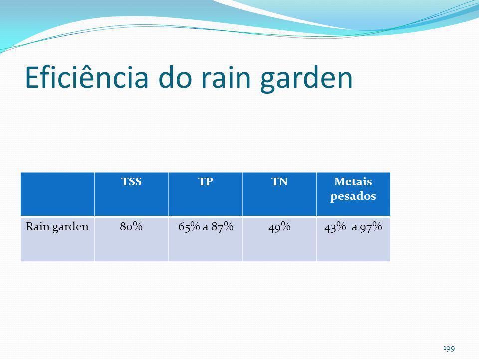 Rain Garden (bioretenção)