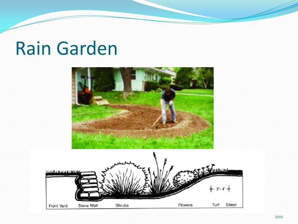 Eficiência do rain garden