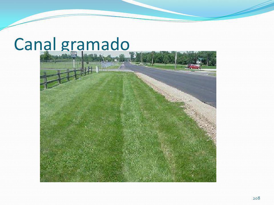 Vários tipos de gramas usados no Brasil