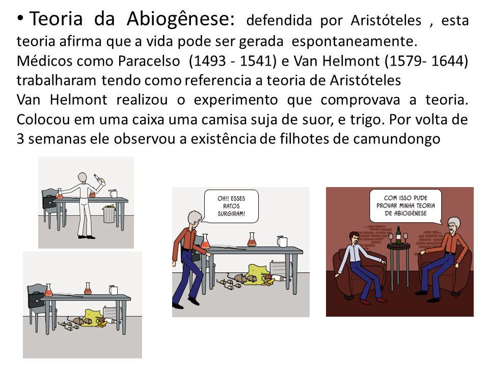 Teoria da Abiogênese: defendida por Aristóteles , esta teoria afirma que a vida pode ser gerada espontaneamente.