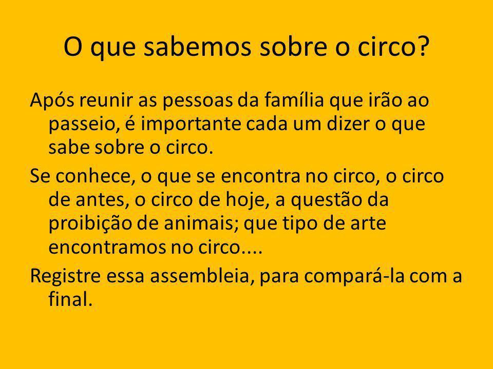 O que sabemos sobre o circo