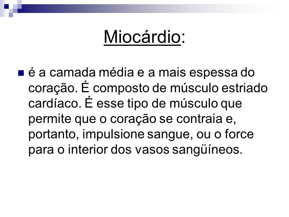 Miocárdio: