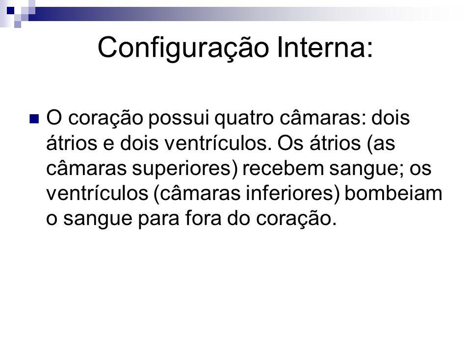 Configuração Interna: