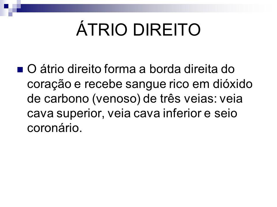 ÁTRIO DIREITO