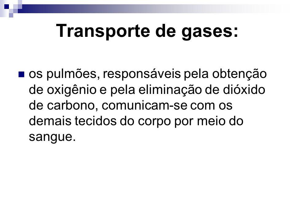 Transporte de gases: