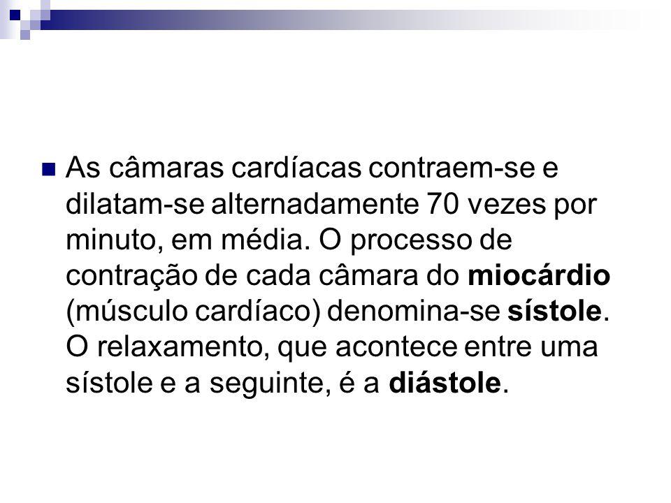 As câmaras cardíacas contraem-se e dilatam-se alternadamente 70 vezes por minuto, em média.