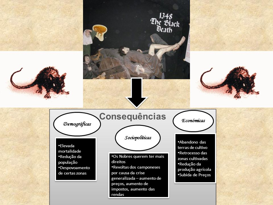 Consequências 1348 Peste Negra Demográficas Económicas Sociopolíticas