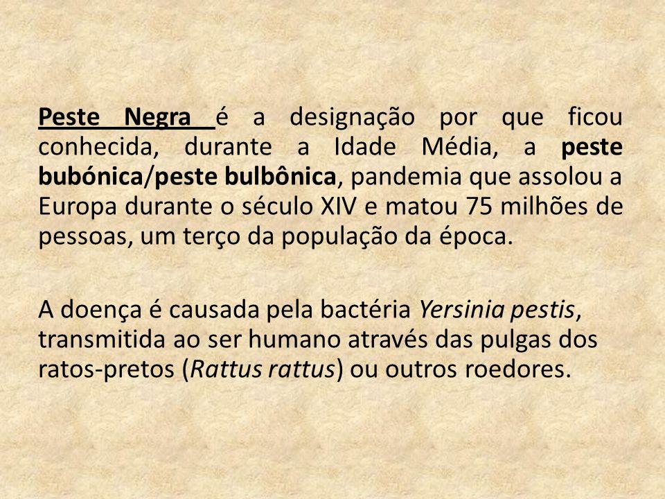 Peste Negra é a designação por que ficou conhecida, durante a Idade Média, a peste bubónica/peste bulbônica, pandemia que assolou a Europa durante o século XIV e matou 75 milhões de pessoas, um terço da população da época.