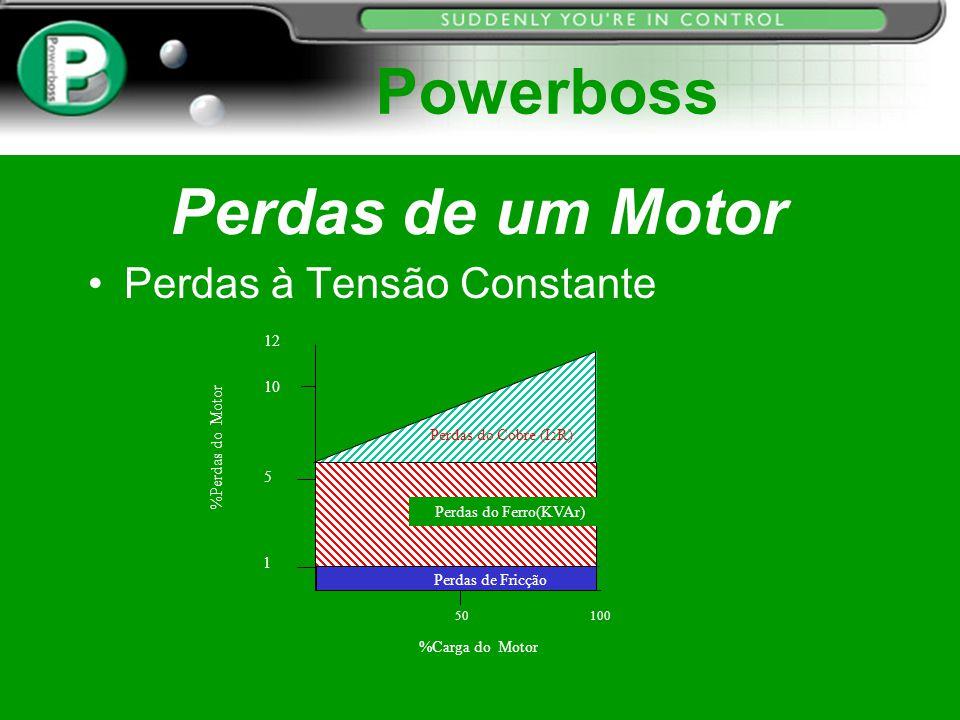 Powerboss Perdas de um Motor