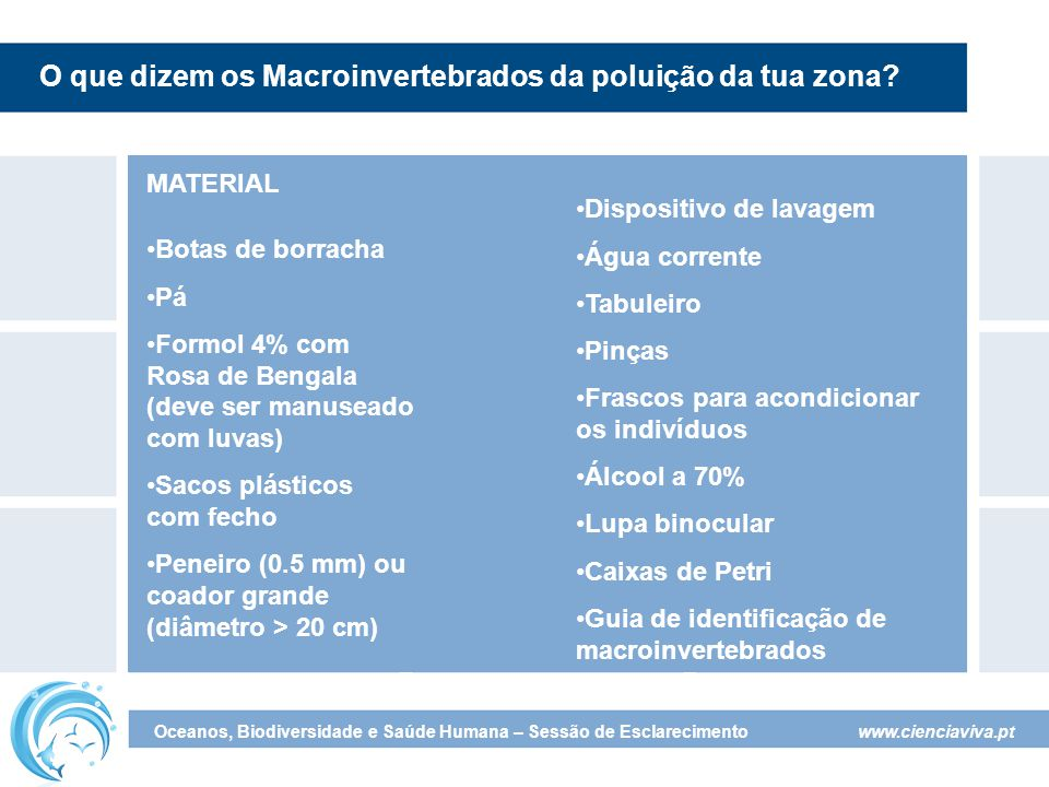 O que dizem os Macroinvertebrados da poluição da tua zona