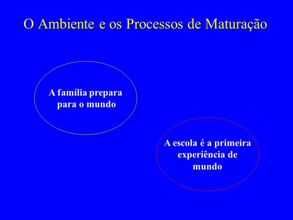 O Ambiente e os Processos de Maturação
