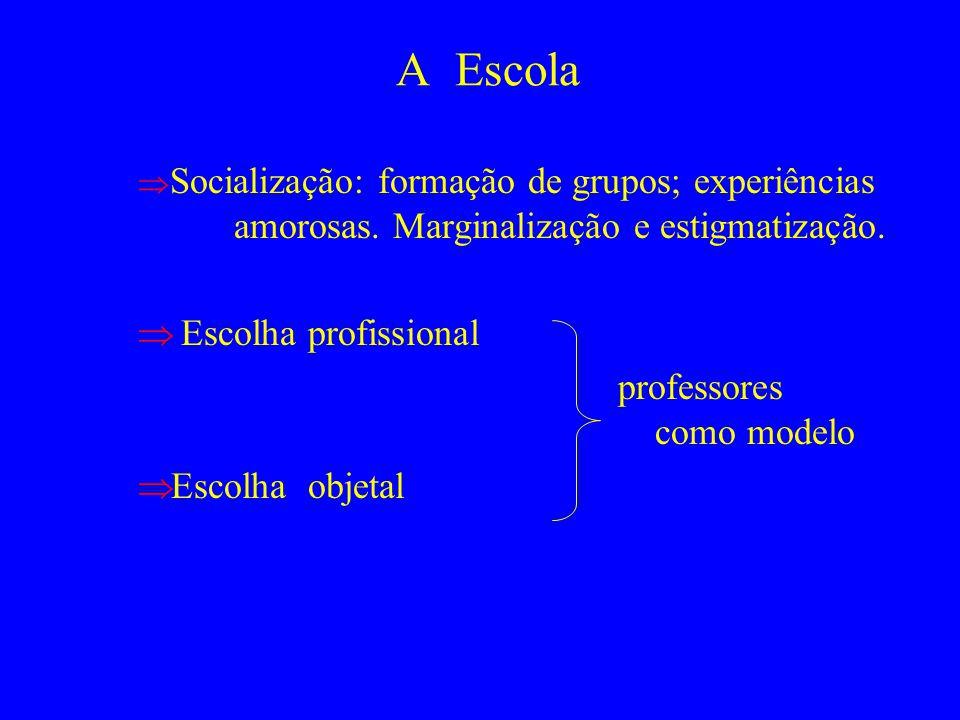 A Escola Escolha profissional professores como modelo Escolha objetal