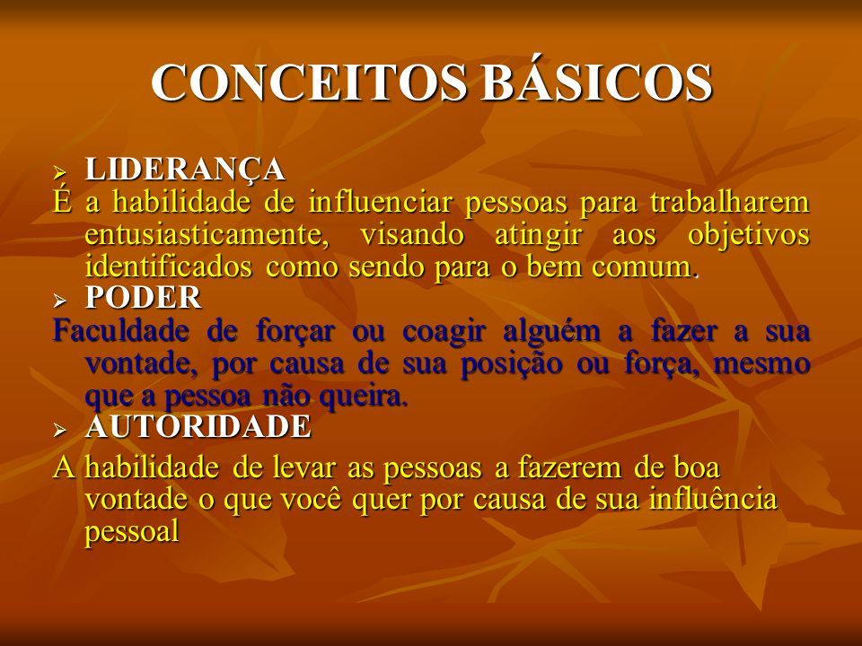 CONCEITOS BÁSICOS LIDERANÇA