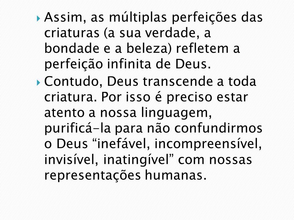 Assim, as múltiplas perfeições das criaturas (a sua verdade, a bondade e a beleza) refletem a perfeição infinita de Deus.