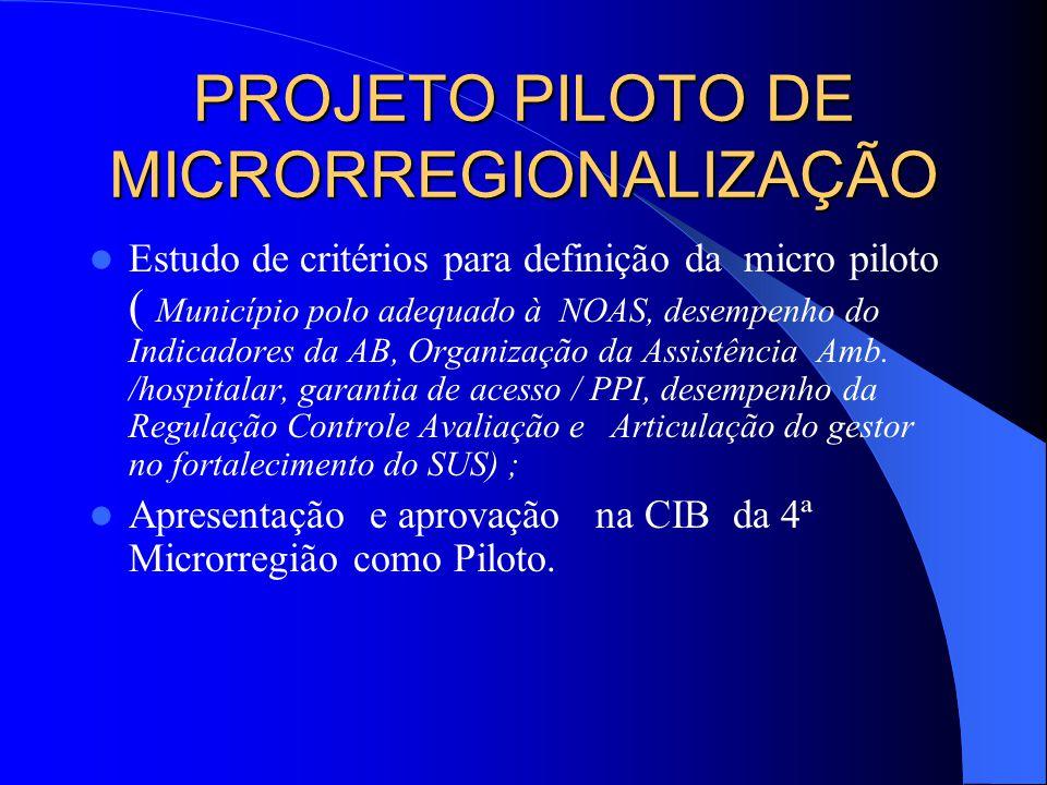 PROJETO PILOTO DE MICRORREGIONALIZAÇÃO