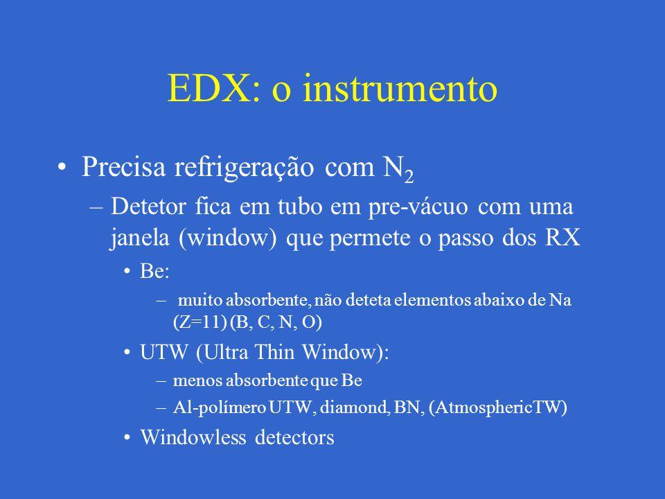 EDX: o instrumento Precisa refrigeração com N2