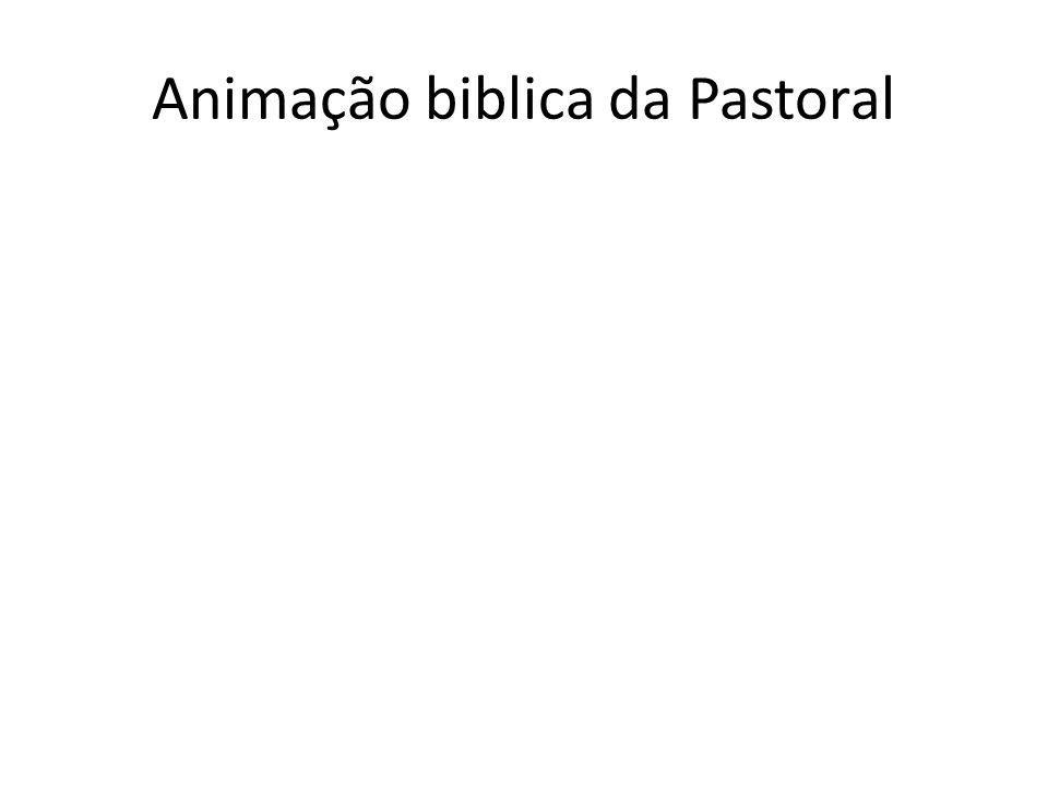 Animação biblica da Pastoral