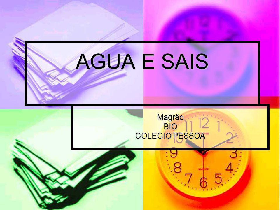 Magrão BIO COLEGIO PESSOA