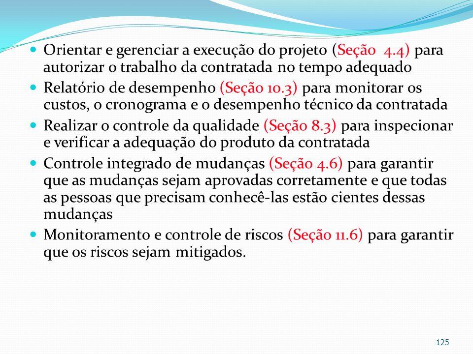 Orientar e gerenciar a execução do projeto (Seção 4