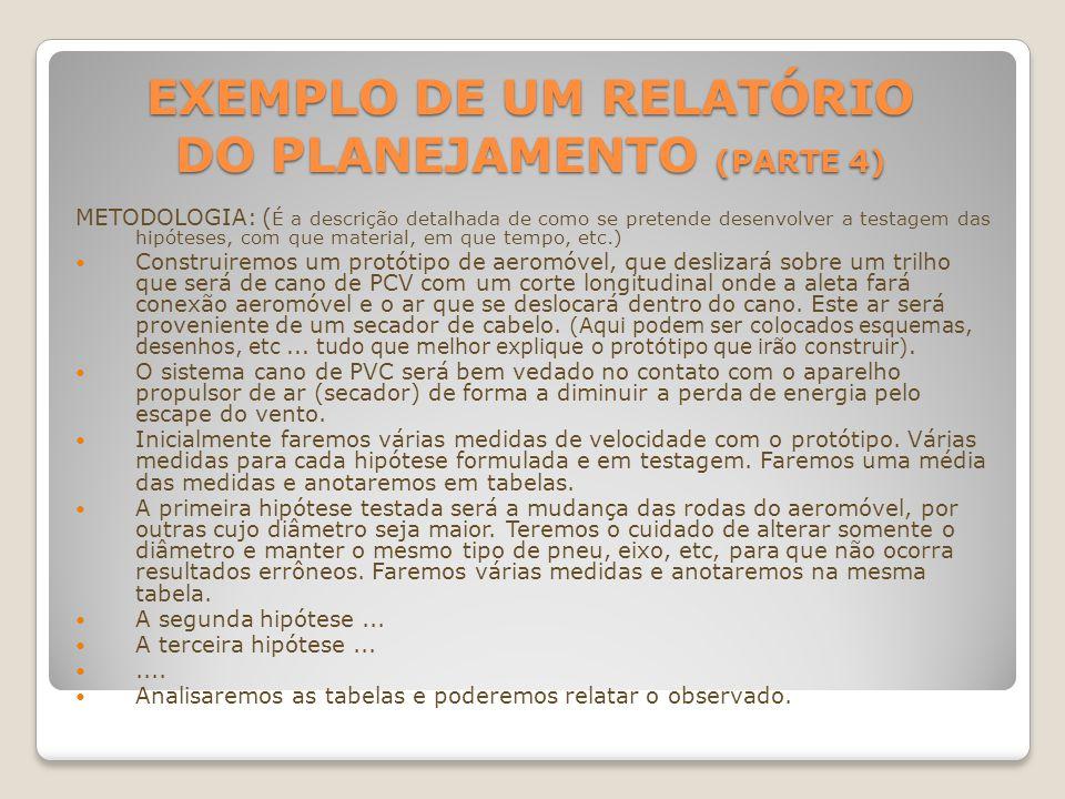 Exemplo de um Relatório do Planejamento (parte 4)