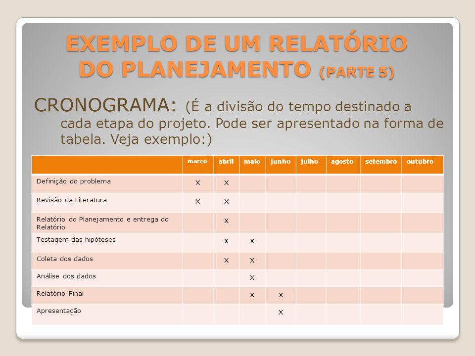 Exemplo de um Relatório do Planejamento (parte 5)