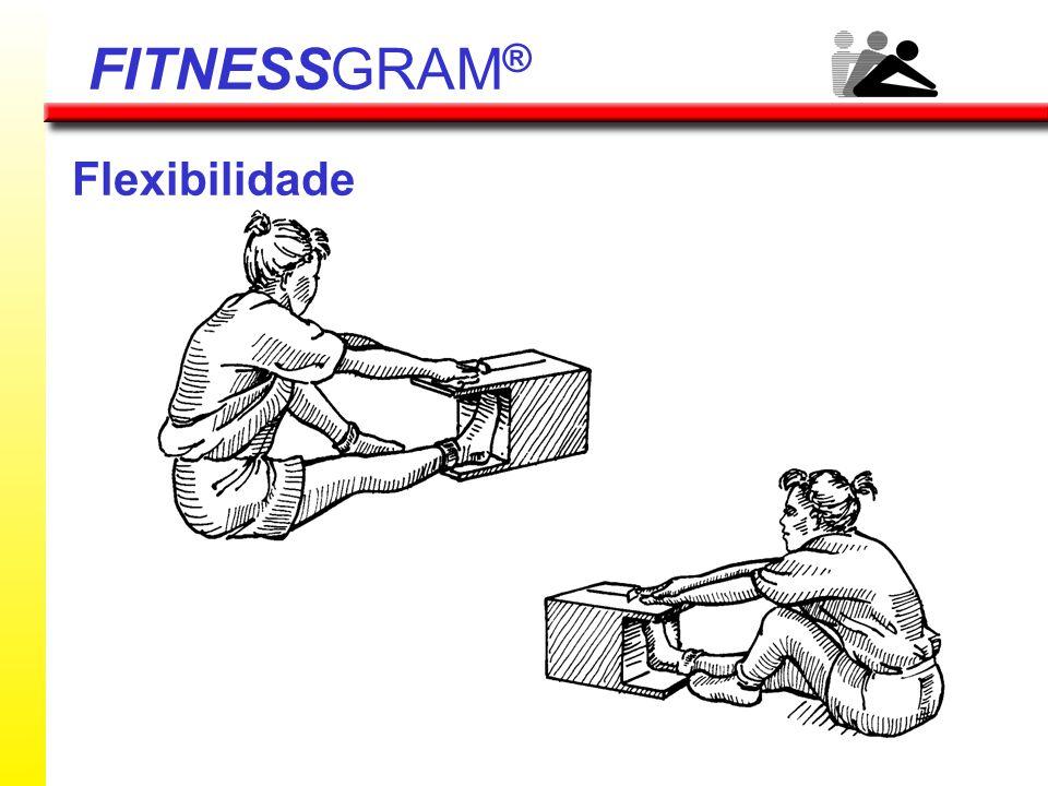 FITNESSGRAM® Flexibilidade