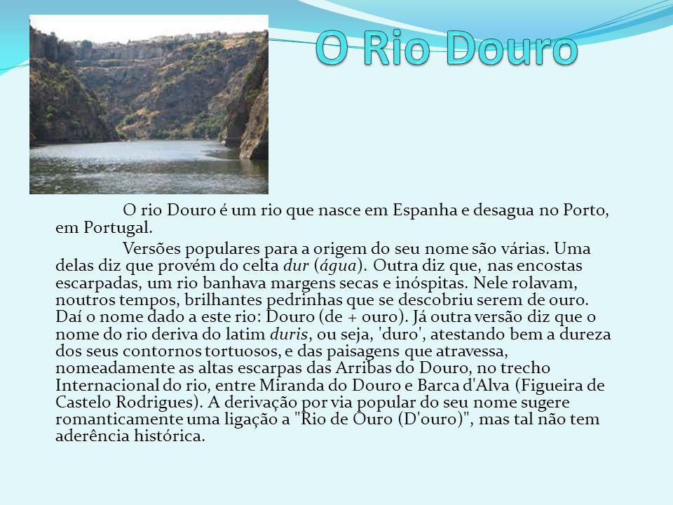 O Rio Douro O rio Douro é um rio que nasce em Espanha e desagua no Porto, em Portugal.