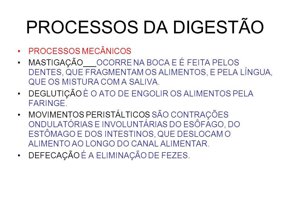 PROCESSOS DA DIGESTÃO PROCESSOS MECÂNICOS