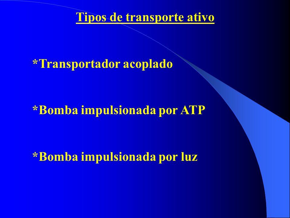 Tipos de transporte ativo